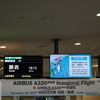 ANA A320neo就航初便 NH95便(羽田-関西)搭乗記