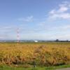 「日本デンマーク」の消長 −愛知県旧碧海郡地域の農村と農業ー