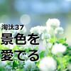 淘汰された100の物たち37【花の無い生活】生花がなくても豊かに暮らせるかもしれない件。