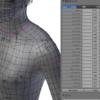 スキニングの影響ボーン数制限処理(Blender)