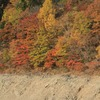 飛騨の秋景色 【秋神ダム】