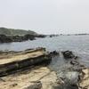 城ヶ島 釣果 2017年5月7日