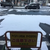 今週の漢方相談会のお知らせ~初雪降りました。