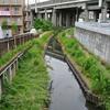 高沼用水路(南与野~中浦和)