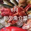 6月の旬の魚介類