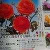 気分転換が無料でかんたんにできます ながめるだけで気分が晴れるお花の通販カタログ
