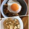 ひき肉の代わりに高野豆腐レシピ。キーマカレーと麻婆豆腐。