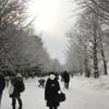 2泊3日・北海道・札幌雪祭り・2日目