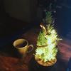 【超簡単】414円で手作りクリスマスツリー(しっかりピカピカ光る電飾付き)