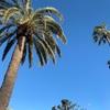 カリフォルニアの大人も子供も嬉しい公園探検