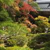 修善寺で開催予定の修禅寺庭園~東海第一園~秋の特別公開は中止 新型コロナウイルス
