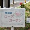 平戸公園に小さなバラ園があるぞ!東成区ローズガーデン【大阪市天王寺区】