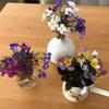 ベランダの花いじり