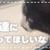 【近所ののらさんが気になって、仲良くなりたいけど迫力に負けちゃうおばあちゃん猫 #44】