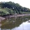 亀山湖でバス釣り 前編