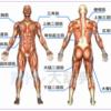 【スピードトレーニング】動的全身可動域の広さと柔軟の関係 ( ストライドとピッチ )