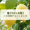 【レモン栽培】冬(12月~2月)にやることまとめ【柑橘類の育て方】