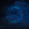 無限に続く夜の旅へ~Chouchou「theme02 Night and Wanderer」(2017)
