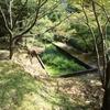 【三重・熊野】エメラルドグリーンに輝く滝壺を持つ、布引の滝(前編)