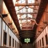 北海道 網走 「博物館 網走監獄」見所たくさん、昔と今の刑務所、無料ツアー参加