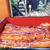 旬の味うおはる @東白楽 美味しい鰻と日本酒で元気を注入してもらいました