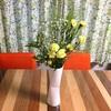 お花飾ってみました