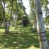 軽井沢浪漫…街の彩と塩沢湖畔に於ける木洩れ陽に想う