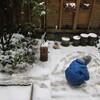 """冬の朝と、谷川俊太郎さんの """" 幸せについて """""""
