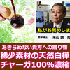 私的お薦めパワースポット:ガン封じのご利益東京神奈川5選