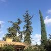美しいホテル・Mas la Boella ~@タラゴナ・スペイン~