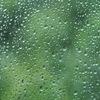 梅雨!通勤!嫌いじゃない…と思いたい。