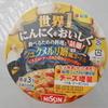 イオン加古川で日清食品の松屋のカップ麺「シュクメルリ鍋風ヌードル」を買って食べた感想