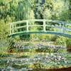 週末行った比叡山ガーデンミュージアムの話