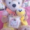 ♡ ナッツ10歳 香港ディズニー 誕生日旅行 ♡