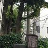 旧中山道①-縁切り榎