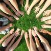 信用が評価される世の中で生きるということを考えさせられたボランティア