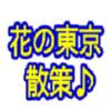 花の東京~散策♪・・・(^^ゞ