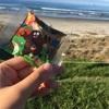 ニュージーランドで食べた美味しいアイスクリームたち2