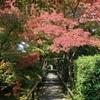 住めば都「京都市北区」のマンション情報をお届け!