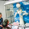製造期間は80週間『名古屋市科学館特別展「ロボットってなんだろう?」』