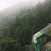 霧に包まれた夏の大山へ