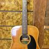 新しいギター : Morris W-20