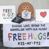 Kis-My-Ft2 LIVE TOUR 2019 FREE HUGS!@東京ドーム 5/7