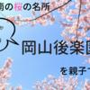 2018年の桜の季節に先駆けて岡山・後楽園を子供と散策!ここでしか買えない美味しいお土産もご紹介!