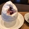 子連れカフェ♪ 苺たっぷり冬季限定の絶品かき氷 六華亭(岡崎市)
