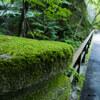 西沢渓谷へ続く道