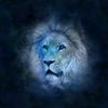 今月の12星座物語~♌Leo★獅子座のストーリー~
