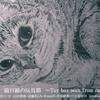 【展示】猫目線の玩具箱 ~Toy box seen from cat's eyes~ @ギャラリー「4匹の猫」(大阪市北区茶屋町)