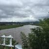 川舟の綱張り詰めて梅雨出水
