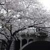 勝俣部長の「ため息」1198・・・・懐かしい 風景